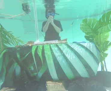 Chet Porter Underwater DJ Set